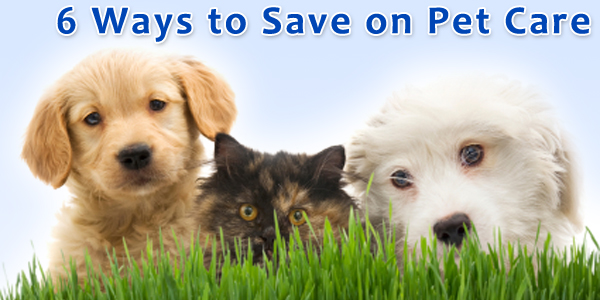 6 Ways to Save on Pet Care