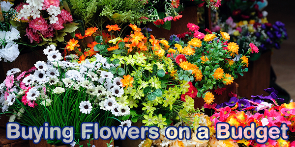 Buying Flowers on a Budget