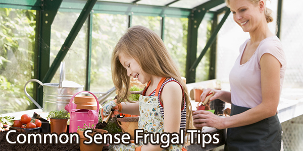Common Sense Frugal Tips
