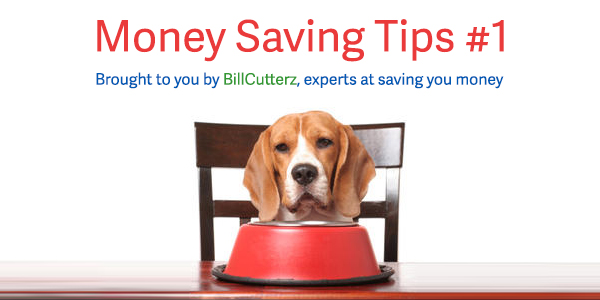 Money Saving Tips 1 Organic Dog Products and Supplies