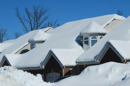 Surviving the Snowpocalypse