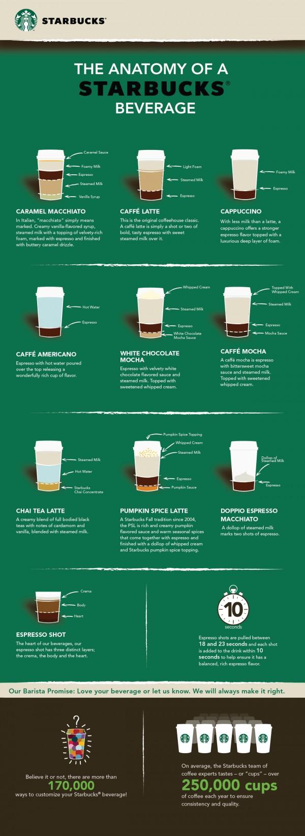 anatomy of starbucks drinks